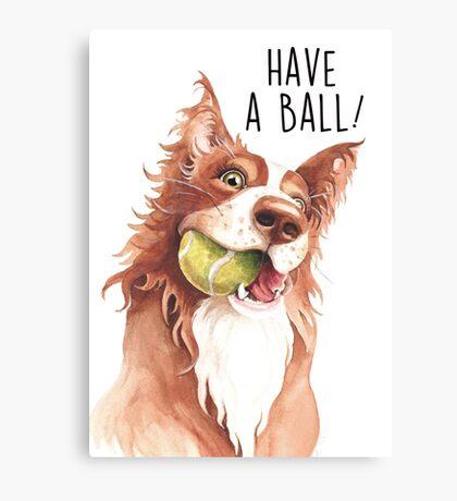 Have A Ball! Canvas Print
