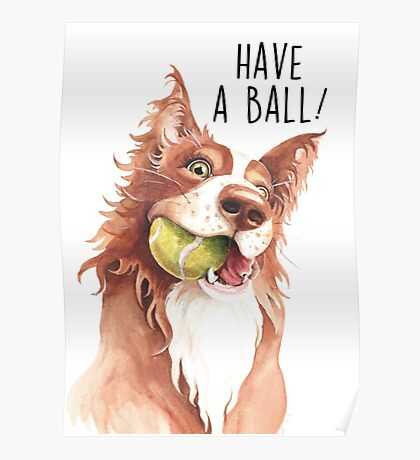 Have A Ball! Poster