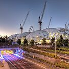 Melbourne Rectangular Stadium • Melbourne • Victoria by William Bullimore
