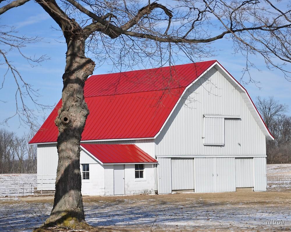 white barn with red roof white barn with red roof by mltrue