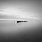 Remnants. by James Ingham