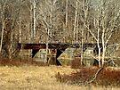 Old Railroad Bridge - Green Lane Reservoir PA by MotherNature