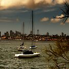 """""""Clouds above Sydney"""" by StarKatz"""