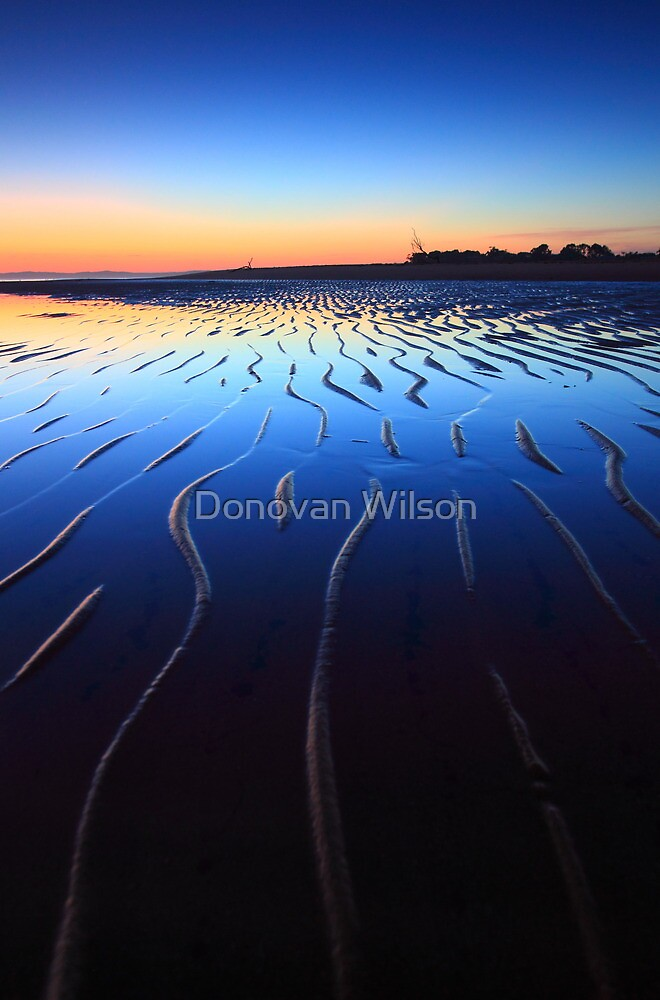 The line in the sand. by Donovan Wilson