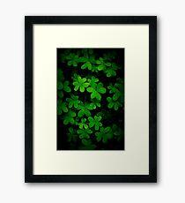 """""""Little Green"""" Framed Print"""