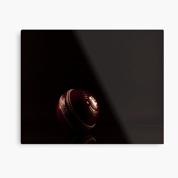 Cricket ball Metal Print