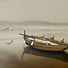 The solitude of the sea by Carlos Casamayor