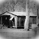Old Slab Hut by PhoenixArt