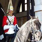 Horse Guards, Whitehall, London by wiggyofipswich