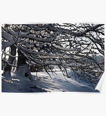 Frozen Twigs #3 Poster
