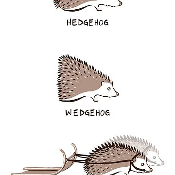 Hedgehogs and their relatives by thevexedmuddler