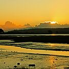 January Baldoyle Estuary Sunrise by Martina Fagan