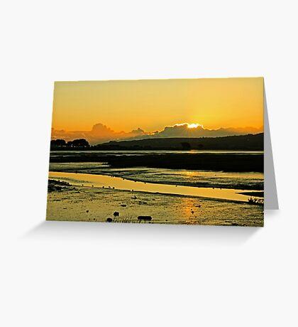 January Baldoyle Estuary Sunrise Greeting Card