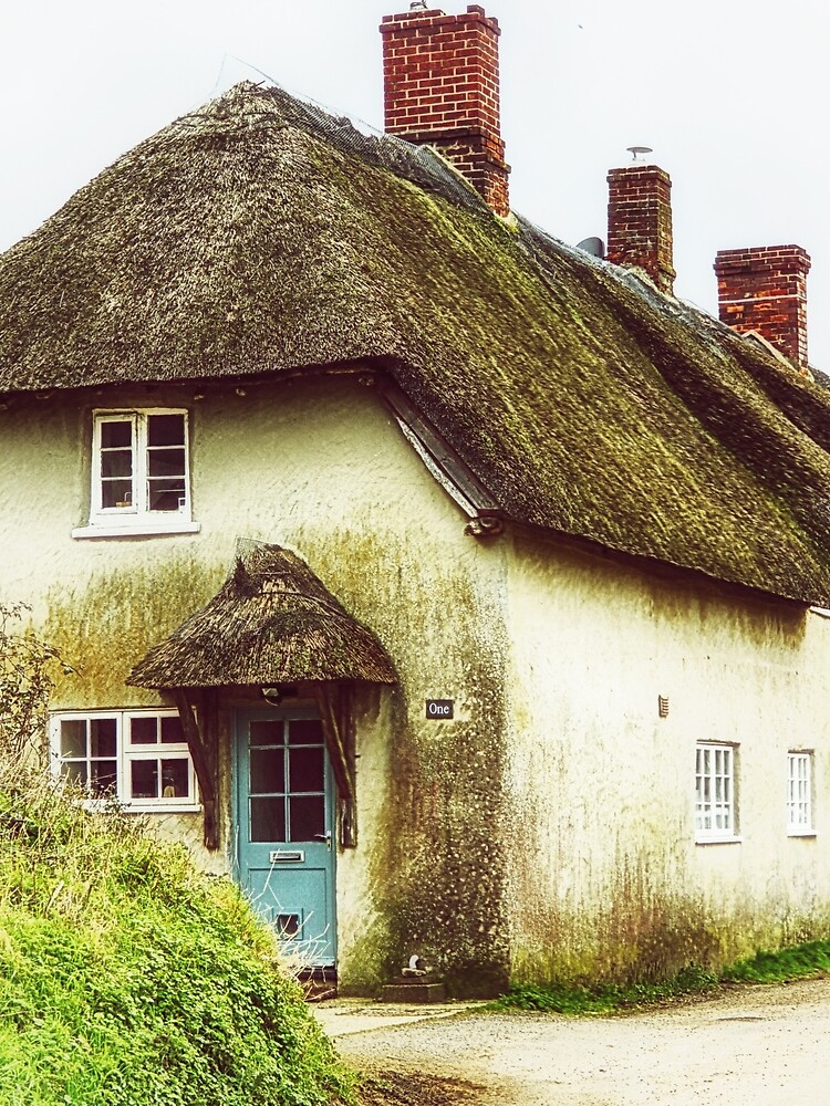 Little Thatched Cottage by InspiraImage