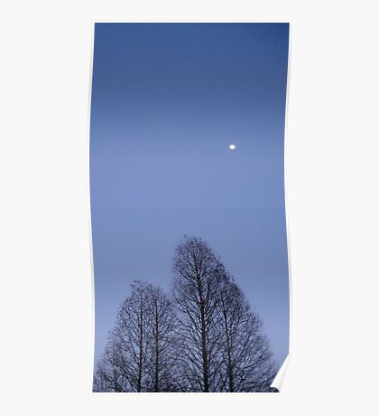 Cypress Trees and the Three Quarter Moon Poster