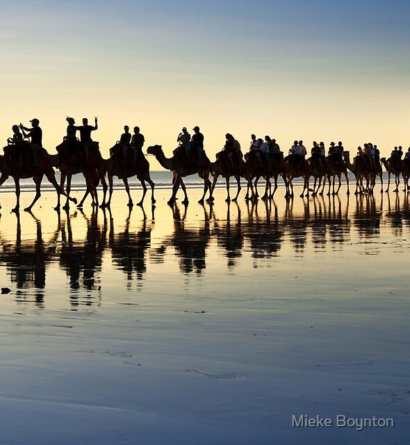 Camels in Blue and Gold by Mieke Boynton