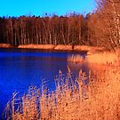 Winter lake by christopher363