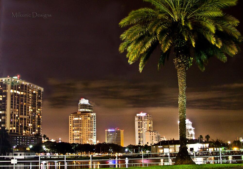 St. Petersburg Night Lights by Edvin  Milkunic