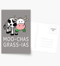 Moo-Chas Grass-ias (Muchas Gracias) Postkarten