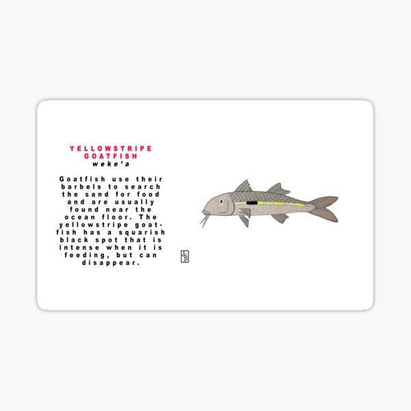 Hawaiian Yellowstriped Goatfish Sticker