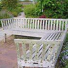 Corner Garden Bench by lezvee