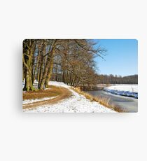 I promised you new snow Canvas Print