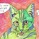 Valentine Cat by Juhan Rodrik