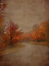 Autumn Road by Shelly Harris