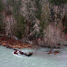 tributaries Cowichan River by TerrillWelch
