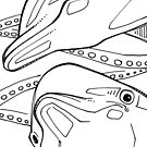 Bottlenose dolphin, coloring book image by Gwenn Seemel