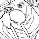 Walrus, coloring book page by Gwenn Seemel