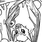 Dayak fruit bat, coloring book page by Gwenn Seemel