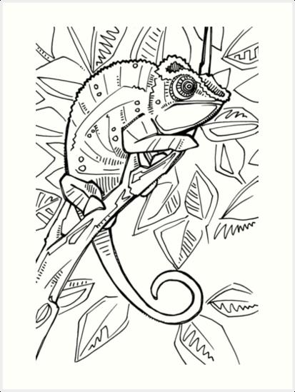 Láminas artísticas «Camaleón pantera, página de libro para colorear ...