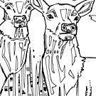 Elk, coloring book page by Gwenn Seemel