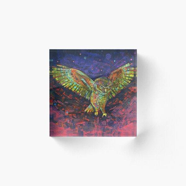 Owl Painting - 2015 Acrylic Block