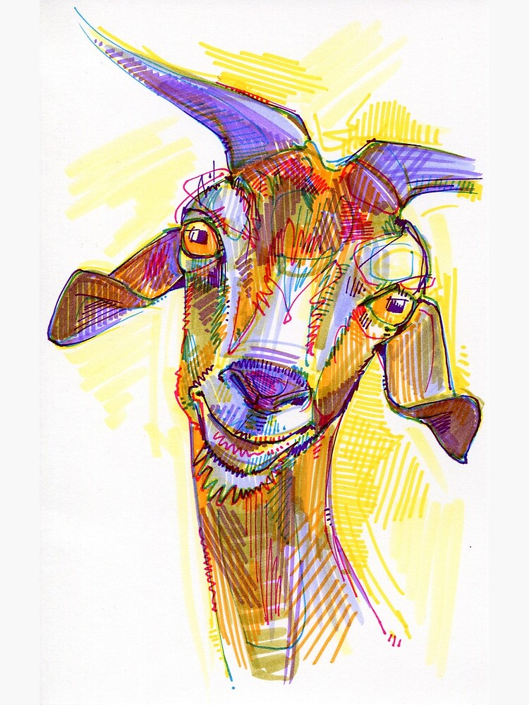 Goat drawing - 2011 by gwennpaints