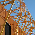 Wolverhampton by Ian Reeley
