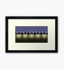 All the Pretties in a Row Framed Print