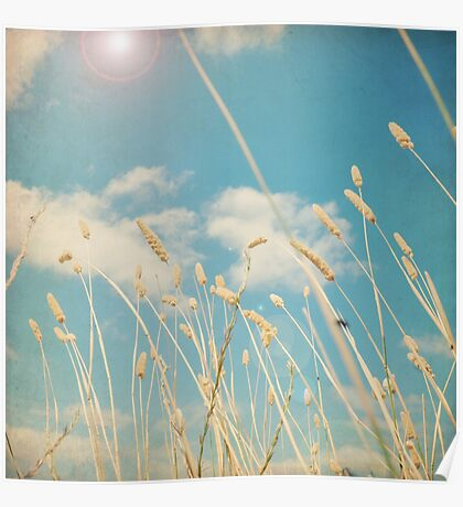 Floating on a Summer Breeze Poster
