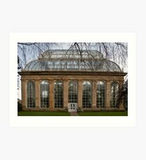 Victorian Temperate Palm House Art Print