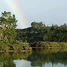 Te Haumi River by Roy  Massicks
