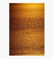 Cambridge Gulf Liquid Gold Photographic Print
