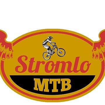 Stromlo Mountain Bike Park by nickrolyat
