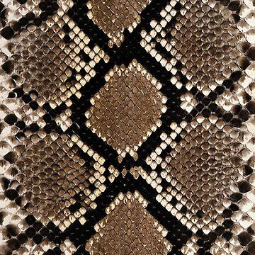 Rattlesnake Skin by 4Craig