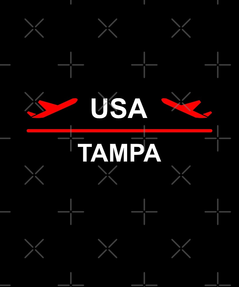 Tampa USA Airport Plane Dark Color by TinyStarAmerica