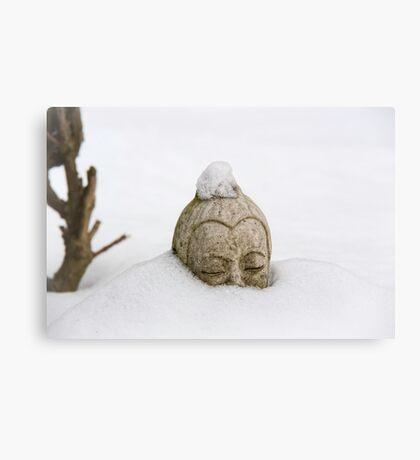 This is Zen Canvas Print