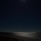 Moonlight over San Carlos Bay by Virginia N. Fred
