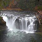 Lewis River Waterfall, Washington  by Bob Hortman