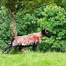 Stretching sheep by EUNAN SWEENEY