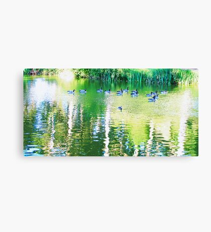 Pond with Geese photo painting Canvas Print